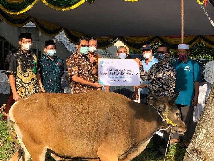 Universitas Riau Terima Bantuan Hewan Kurban dari BSI